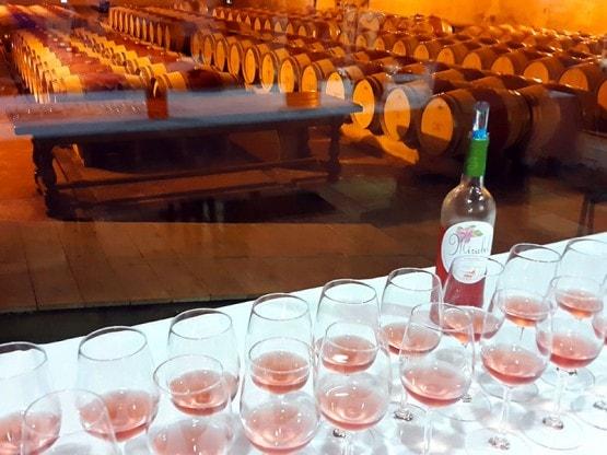 Repas-d-affaires-Seminaires-Salle-de-reception-Bordeaux